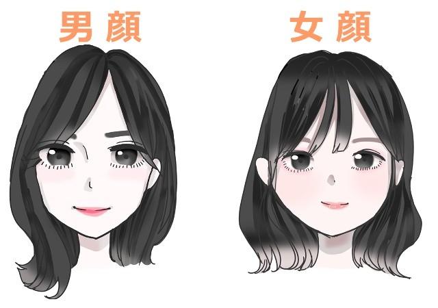 顔タイプ 男顔 女顔